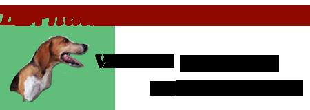 L'attribut alt de cette image est vide, son nom de fichier est logo.png.